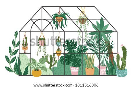 Planting greenhouse. Glass orangery, botanical garden greenhouse, flowers and potted plants home gardening isolated vector illustration. Plants hanging on ropes, growing greenery in pots Stock photo ©