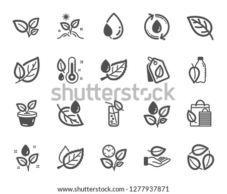 Plants icons. Mint leaf, Growing plants and Humidity thermometer icons. Bottle with mint water, Nature care, leaf on hand. Gardening new flower, environment, water drop and thermometer. Vector