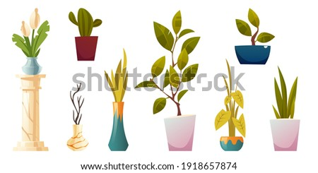 Plants in pots and vases for house or office interior isolated on white background. Vector cartoon set of green potted houseplants, trees and flowers. Home garden with ficus, cactus and calla