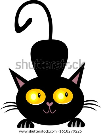 playful black cat with