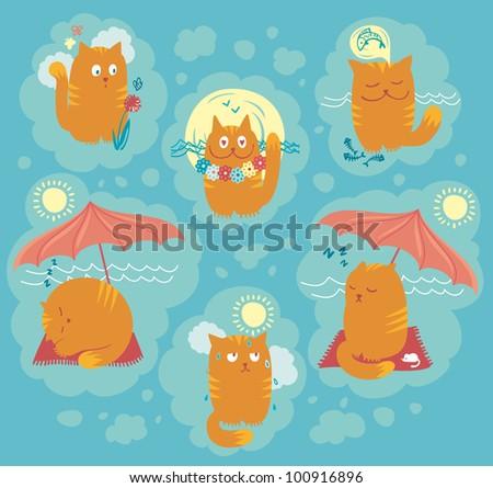 Playful cats on summer holidays
