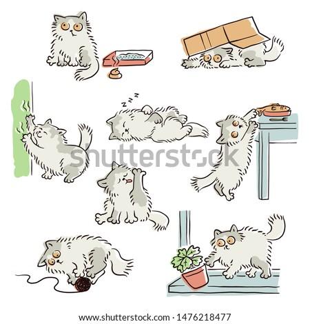 Pat the Great Cat (English and Spanish Edition): Inc. SHARP Literacy,  Francisco X. Mora: 9780983622215: Amazon.com: Books