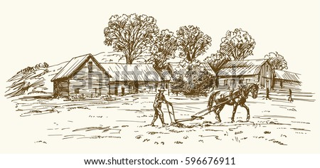 ploughing the field with horse  ...