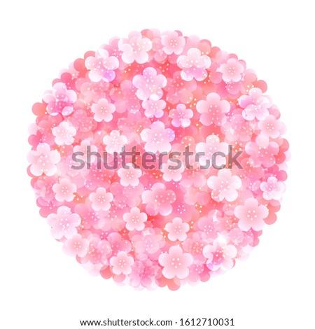 plum blossom spring flower icon