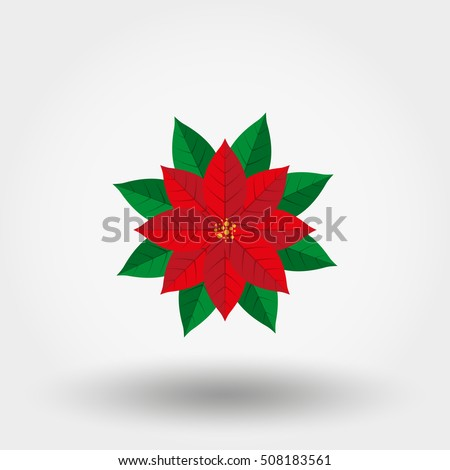Poinsettia. Christmas Star. Icon for web and mobile application. Vector illustration on a white background. Flat design style