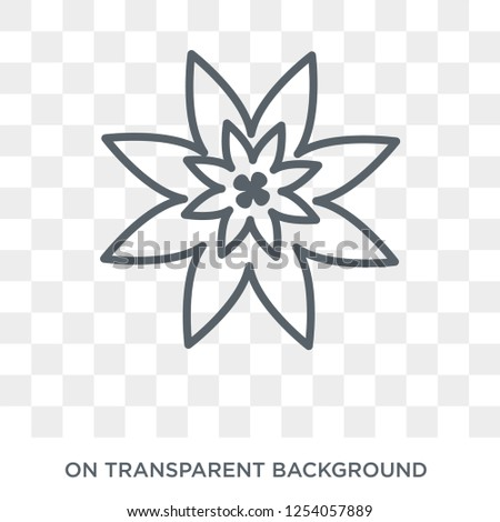 Poinsettia icon. Trendy flat vector Poinsettia icon on transparent background from nature collection. High quality filled Poinsettia symbol use for web and mobile