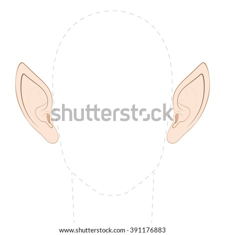 pointed ears of an elf  fairy