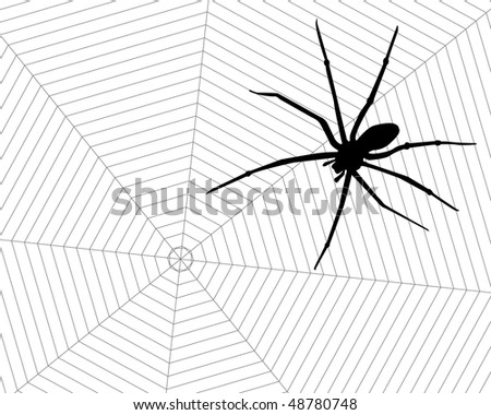 stock-vector-poisonous-black-spider-in-his-web-48780748.jpg