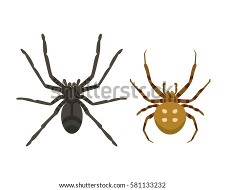 poisonous spider silhouette