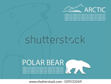 Polar bear background - vector illustration