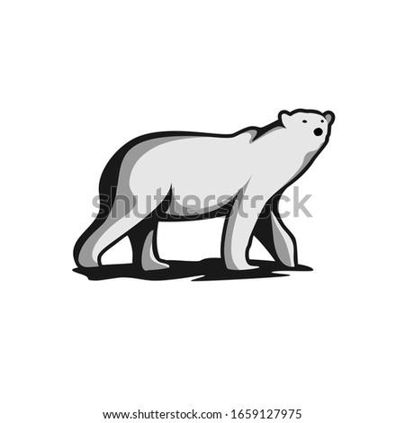 polar bear vectors downloads eps