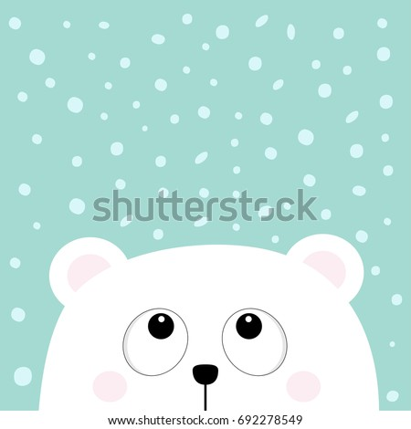 polar white little small bear