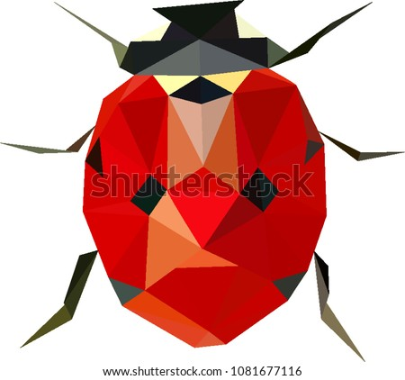 Polinomial ladybird, Low poly ladybug, Ladybird from triangles, Vector graphics, Coccinella septempunctata