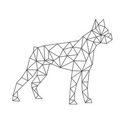 polygon boxer dog, black and white vector