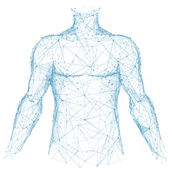 Polygonal abstract isolated body of human on white background. Medicine and health concept. Blue closeup top of body of young man. Low poly wireframe digital technology innovation vector illustration.