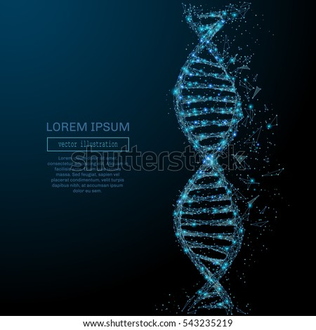 polygonal dna concept vector