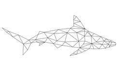 polygonal geometric low poly vector shark vector illustration