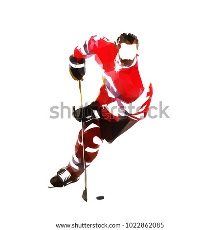 Polygonal ice hockey player, isolated vector illustration