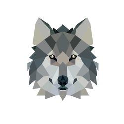 Polygonal Style Illustration Wolf. Low poly illustration.
