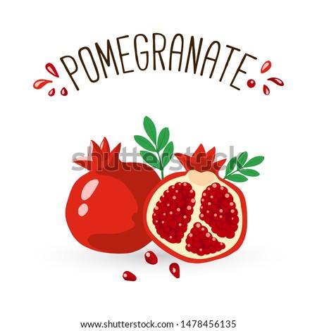 Pomegranate Hand drawn Vector illustration. Pomegranate whole fruit and half sliced.  Сток-фото ©