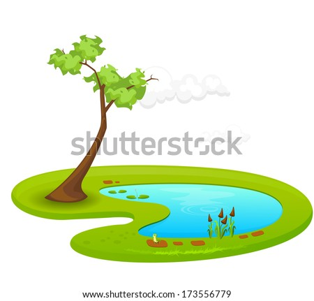 pond   illustration