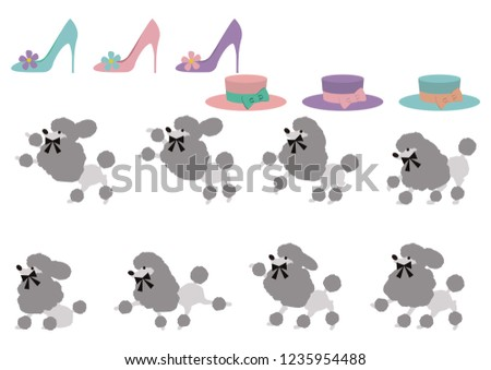 Poodle material collection. Material collection of images of Poodle and Paris. Cute accessories and poodle material collection.