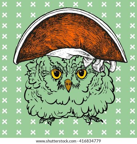 pop art owl in the pirate hat