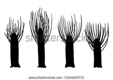 Poplars silhouettes sawn from above, elements set white isolated. Basis graphics