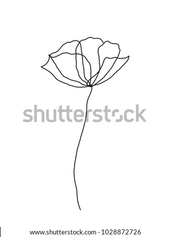 Poppy flower line art. Minimalist contour drawing. One line artwork