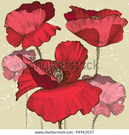 poppy flowers in vintage style
