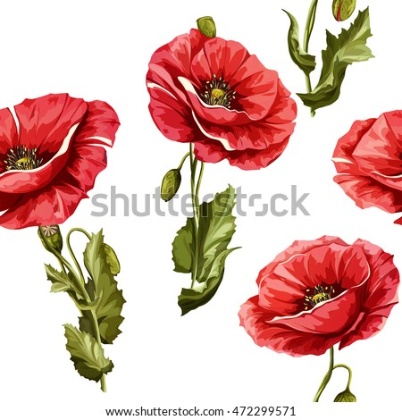 poppy flowers seamless