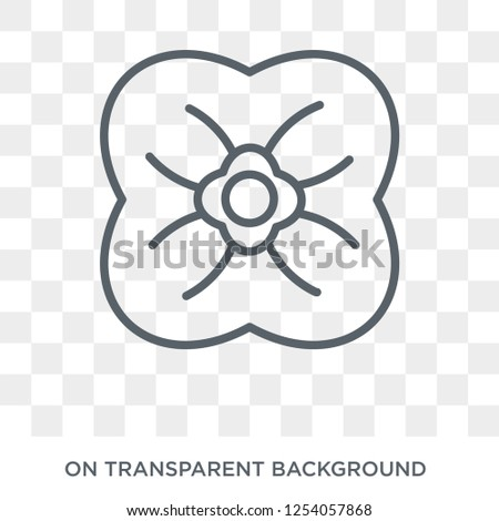 poppy icon trendy flat vector