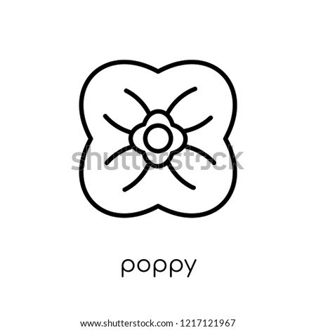 poppy icon trendy modern flat