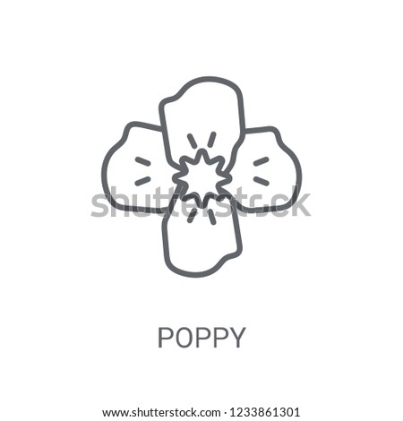 poppy icon trendy poppy logo