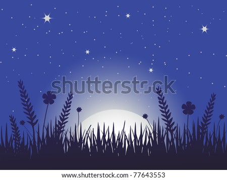 poppy meadow silhouette at night with rising moon and stars in the dark blue sky