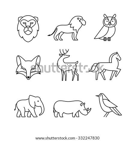popular wild life animals thin