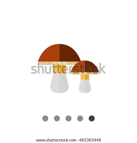 porcini mushrooms icon