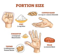 Portion size measurement and calculation for healthy diet outline diagram. Food amount eating control with hand dimension comparison vector illustration. Educational scheme with meal balance and dose.