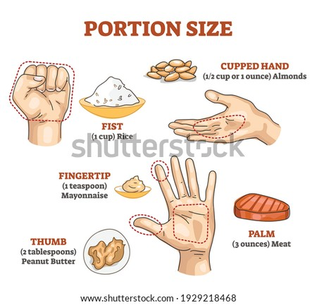 Portion size measurement and calculation for healthy diet outline diagram. Food amount eating control with hand dimension comparison vector illustration. Educational scheme with meal balance and dose. Foto stock ©
