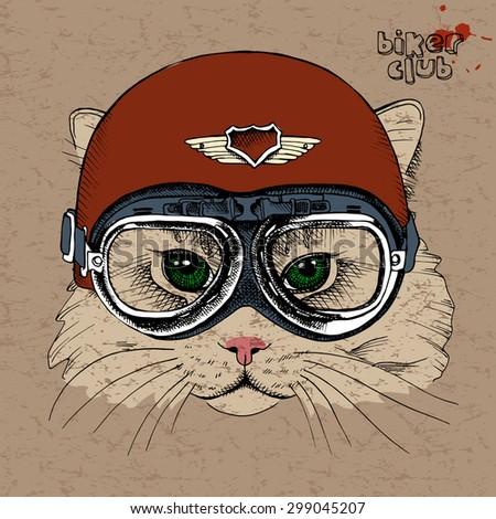 portrait of a cat in a retro