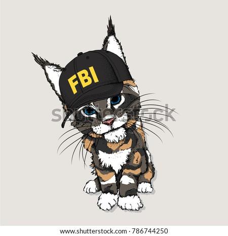 portrait of a cat in the cap of