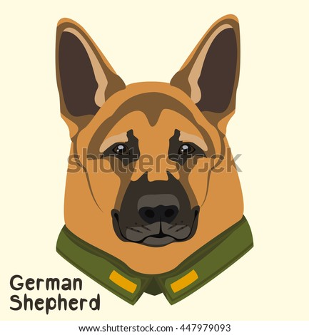 portrait of a dog breed german
