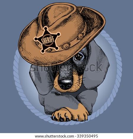 Portrait of a dog Dachshund in cowboy's hat. Vector illustration.