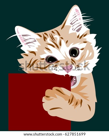 portrait of a kitten gnawing a