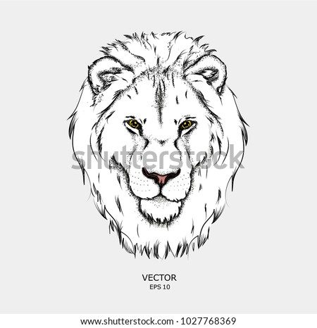 portrait of a lion can be used