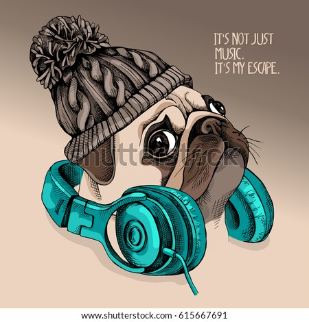 Stock Photo Portrait of a Pug puppy in a knitted hipster hat with a headphones on the neck. Vector illustration.