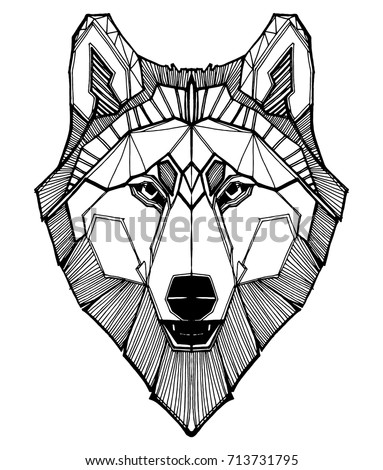 portrait of a wolf the head of