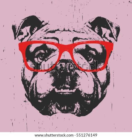 Portrait of English Bulldog with glasses. Hand drawn illustration. Vector. Stock photo ©