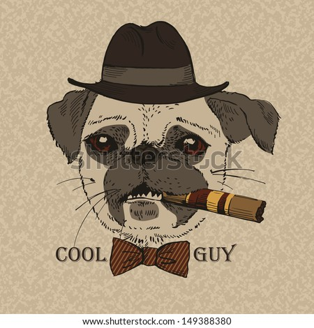 Portrait of Pug-dog with Cigar, Cool Guy, Gangster Look, Vector Illustration