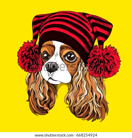 Portrait of the Cavalier King Charles Spaniel in a knitted cap with pom pom. Vector illustration.